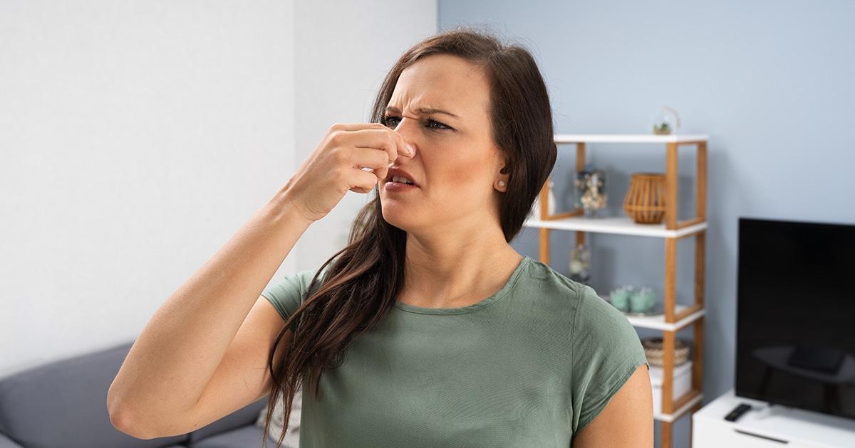 Come eliminare l'odore di muffa causato dall'umidità